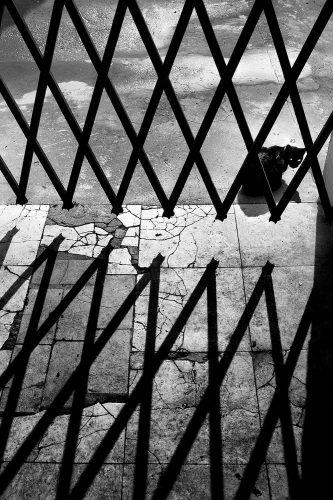 cidade sombra fernando martins galerias municipais capa